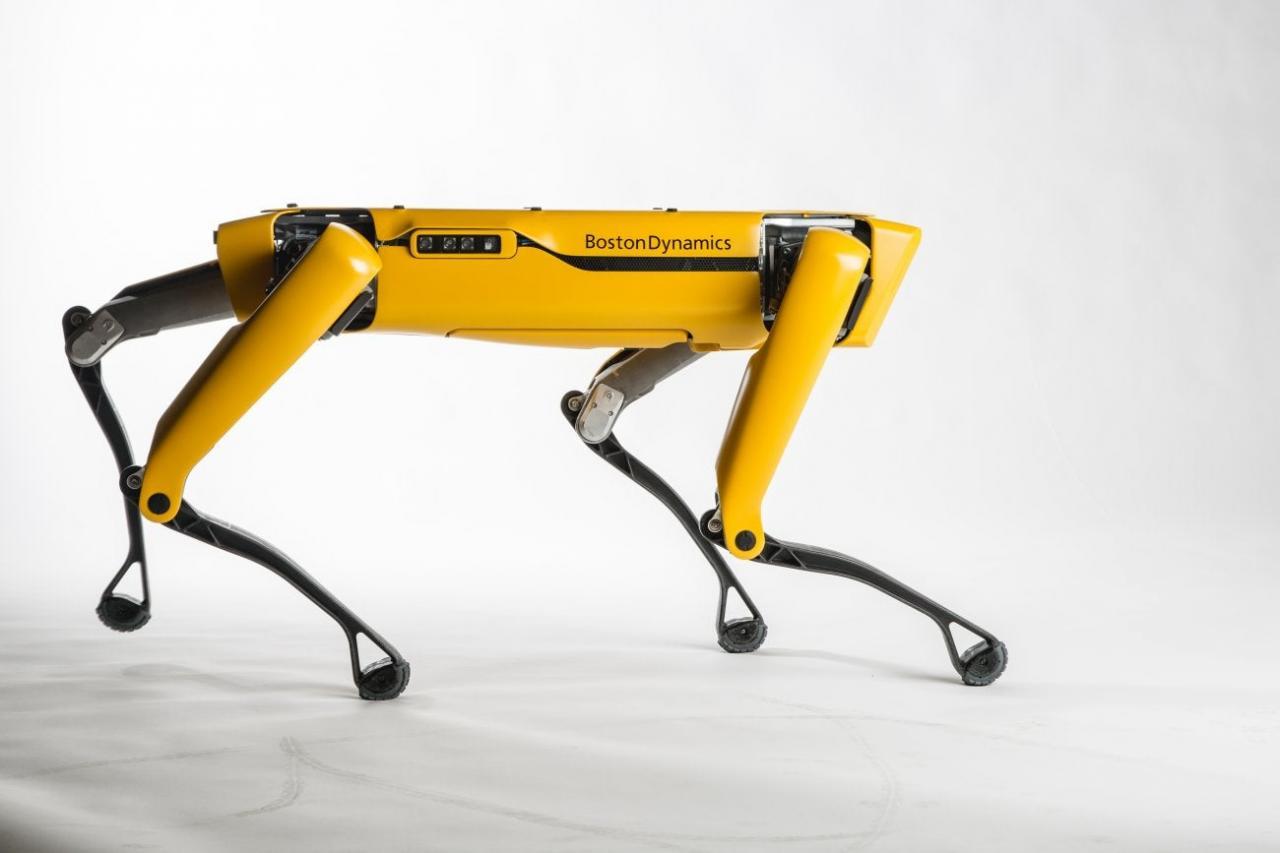 El robot de Google aprende a caminar sin ayuda humana